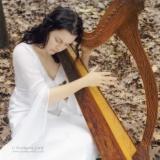 Danishka Esterhazy (harpist and filmmaker)