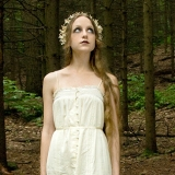 The Wood Faerie